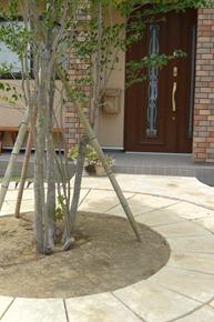 サークル&シンボルツリー