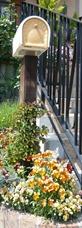 2008.05.27山室邸他、ガーデン 092