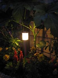 花壇の中のLEDライト