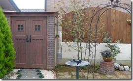 Dea's garden  Canna D70Brown 004