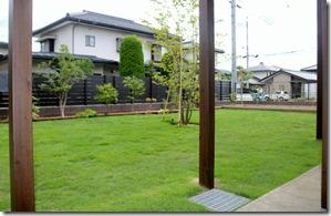 Niwa kōji shibafu hari 3249
