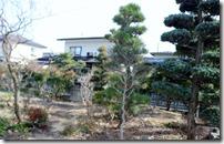 Rifōmumae no niwa 9963