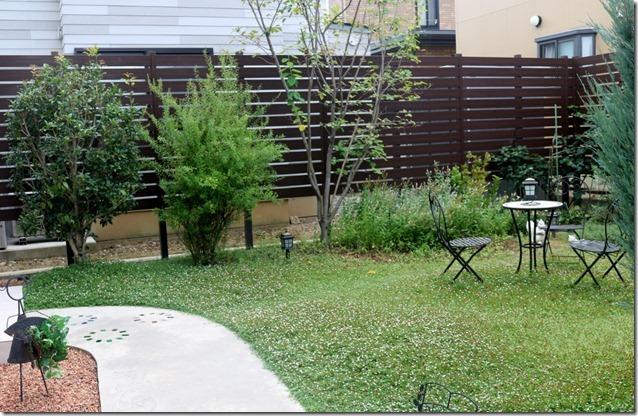 クラピアを植えた庭