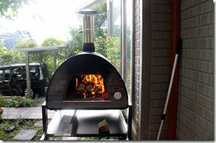Pizza oven ignition