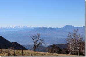 山田牧場から北アルプスを望む