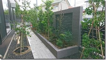 Shokusai kōji4085