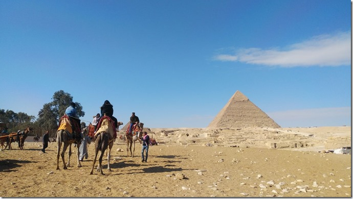 pyramid camel