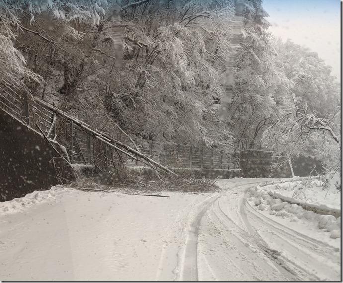 snow touboku sirokuro