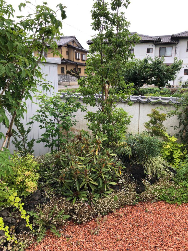 浅間石のある庭