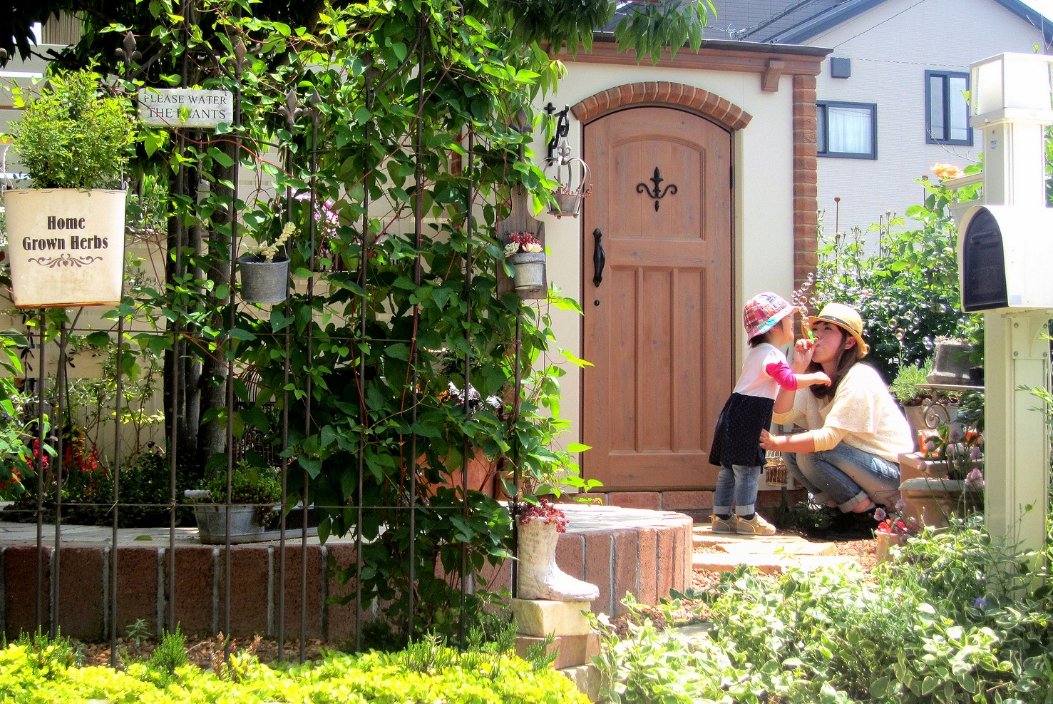 カンナキュートのあるお庭